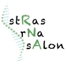 Mini-symposium stRas-rNa sAlon